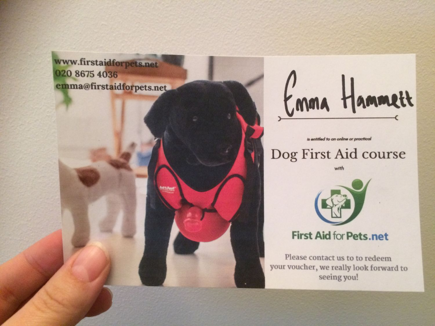 First Aid for Pets - Gift Vouchers