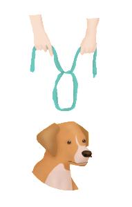 muzzling your pet