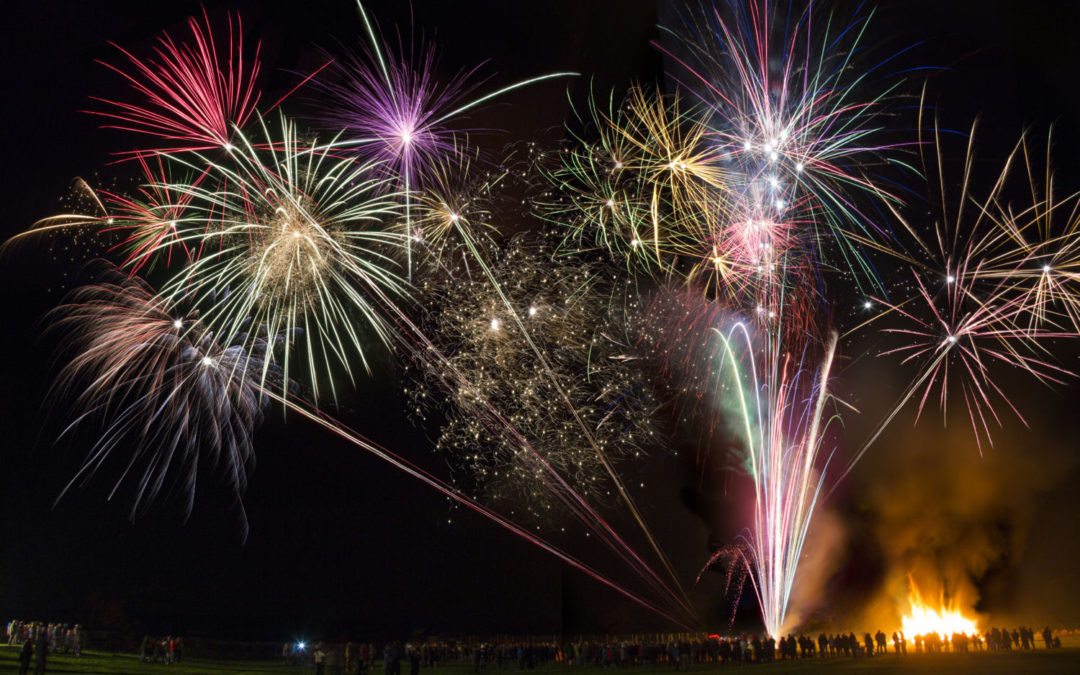 Fireworks – Keep your pet safe and stress free on the noisiest night of the year