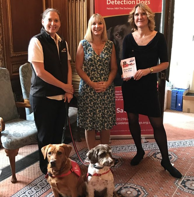 Medical Detection Dogs- a charity using dogs to save lives