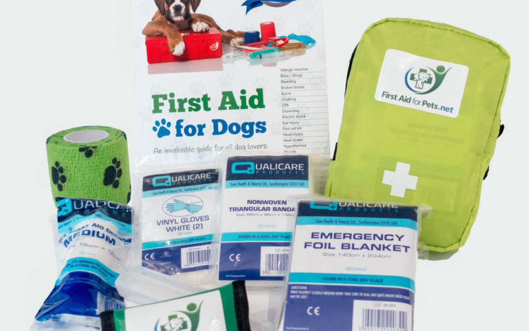 Why have a dog first aid kit and what should be in it?