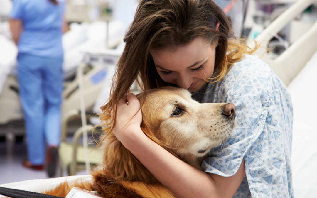 The Positive Power of Pets