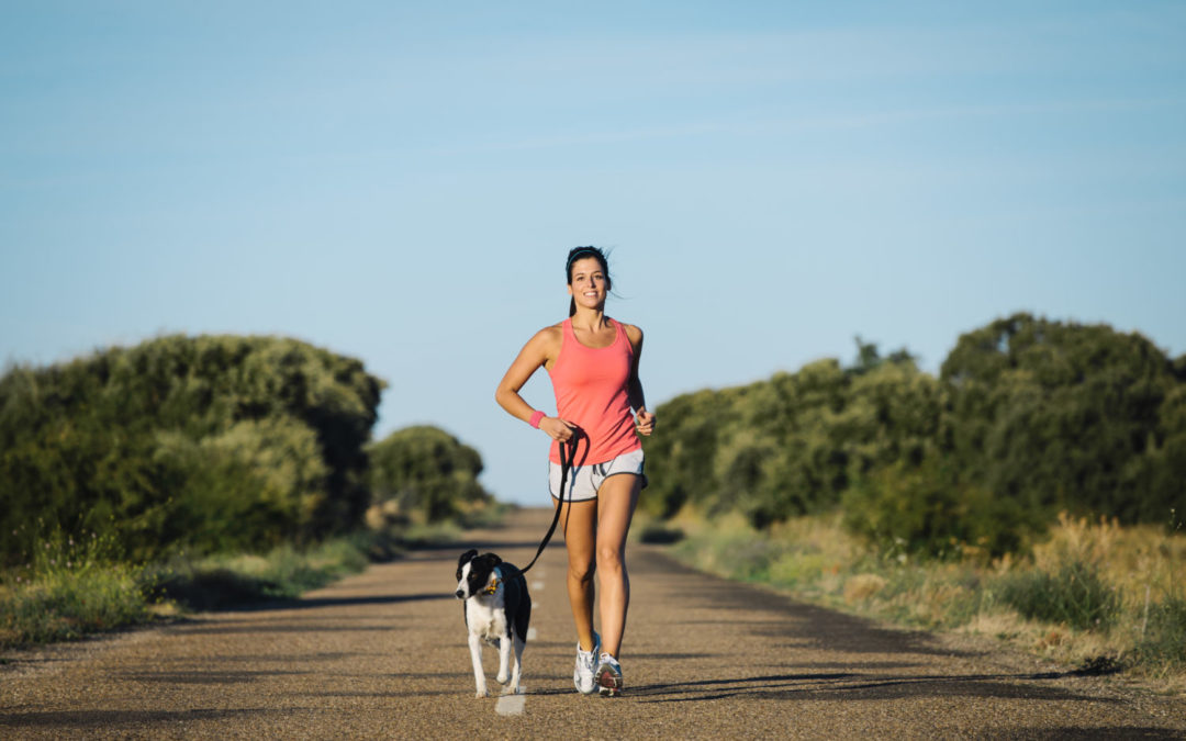 Mutual Benefits of Exercising with your Pet