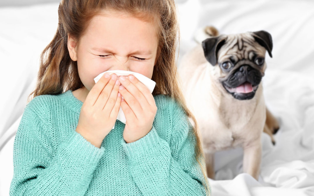 Is owning a pet a sensible idea if you have asthma?